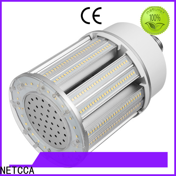 Top led light bulbs screw type led factory for yard