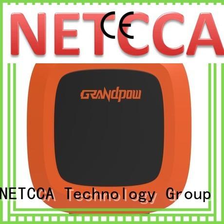 wall sine portable battery power supply lead-acid NETCCA Brand company
