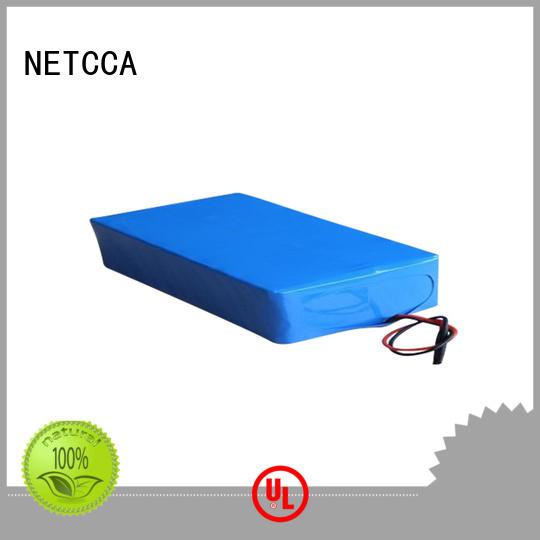 iron series lithium battery pack sinewave NETCCA company