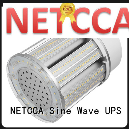 NETCCA led led globe lamp for business for yard