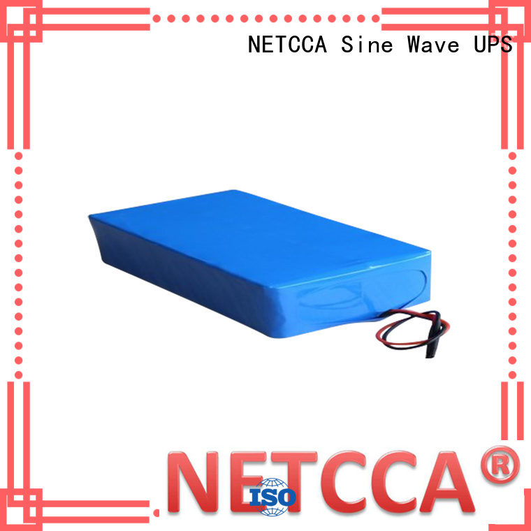 ups lithium battery storage for house NETCCA
