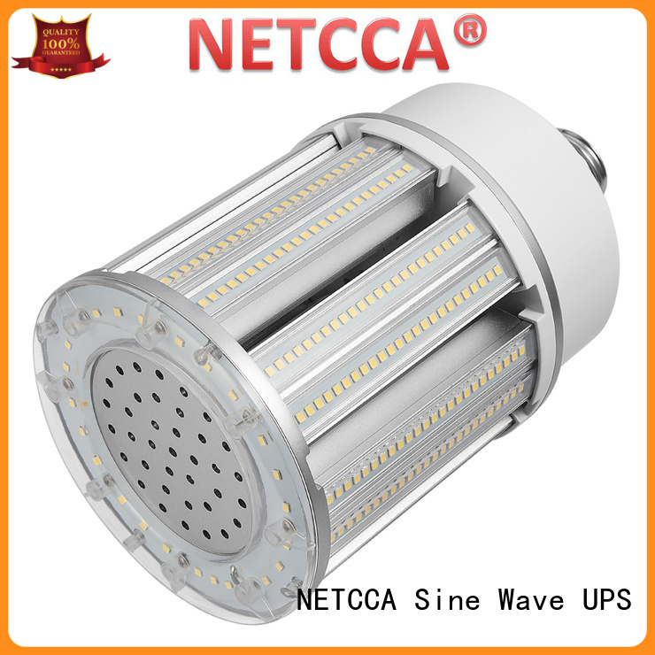NETCCA Wholesale led globe lamp factory for garden